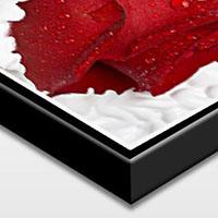 ChromaLuxe Bilder mit Schattenfugen Rahmen